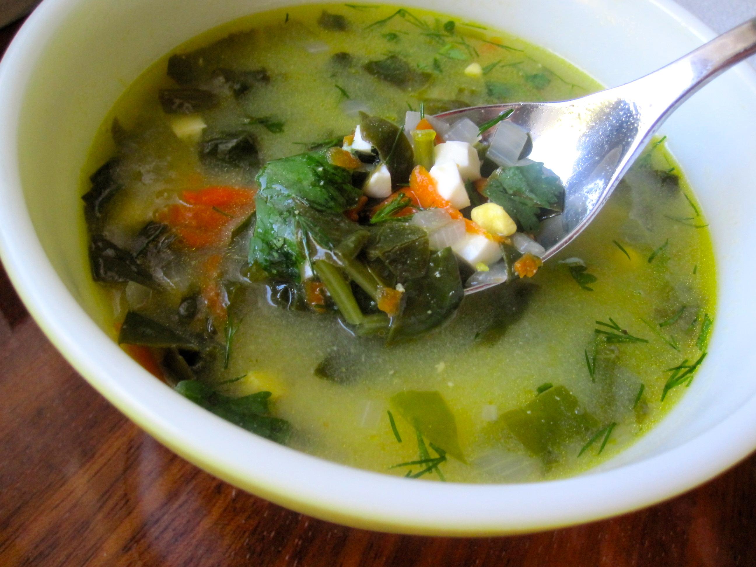 Green Borscht (Ukrainian Sorrel or Spinach Soup) | Marina ...